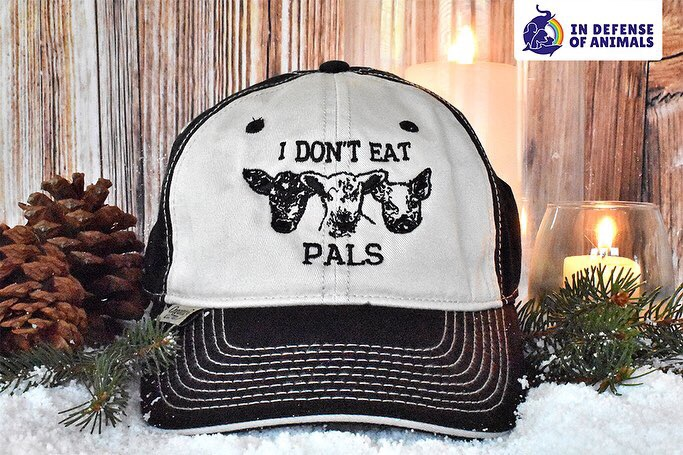Veganpoliceshop.com